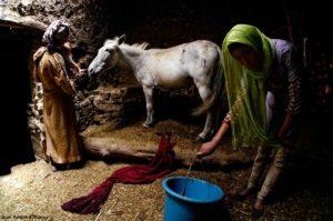 Establo Ait Alla. Marruecos