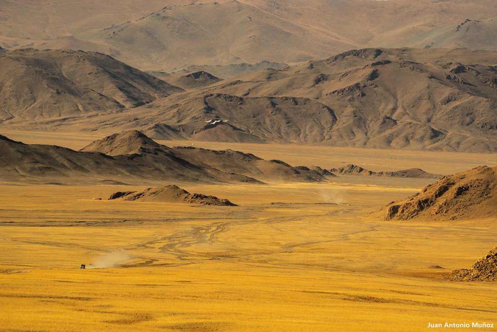 Pista en Ulgii. Mongolia