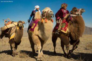 Caravaneros. Mongolia