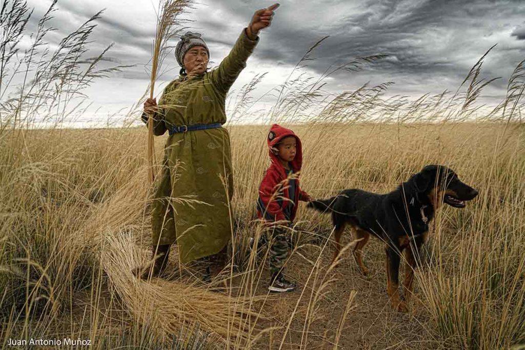 Mongoles cortando hierba. Mongolia