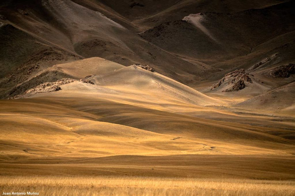 Luces y sombras. Mongolia