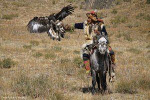 Llegando águila. Mongolia