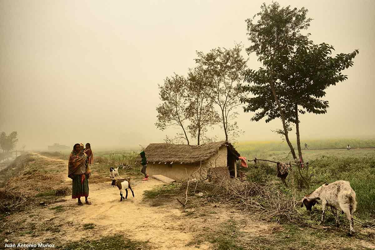 Aldea en niebla. Nepal