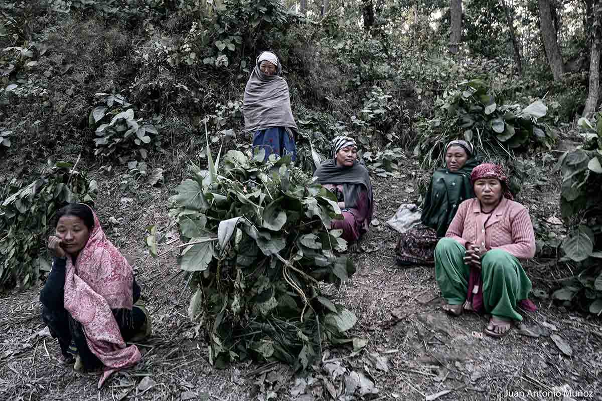 Mujeres del bosque. Nepal