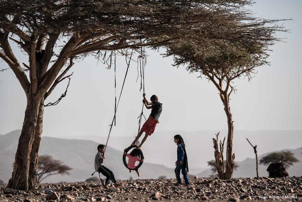 Jugando en la acacia. Marruecos