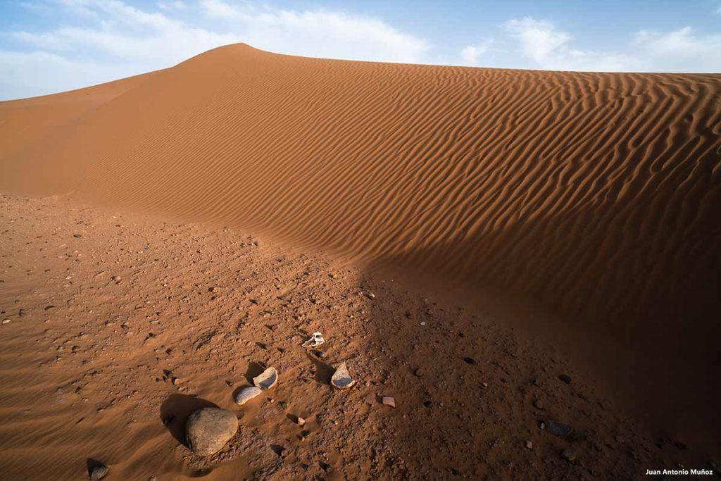 Cerámica del desierto. Marruecos