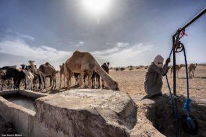 Pozo desierto. Marruecos