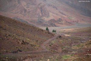 Caminando hacia el camp. Marruecos