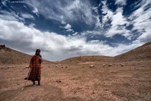 Pastora Atlas. Marruecos