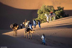 Caravana entre dunas. Marruecos