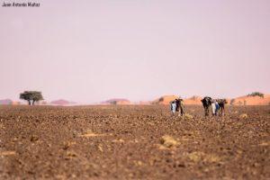 Hacia el espejismo. Marruecos