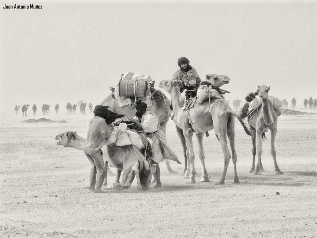 Caravana Mauritania.