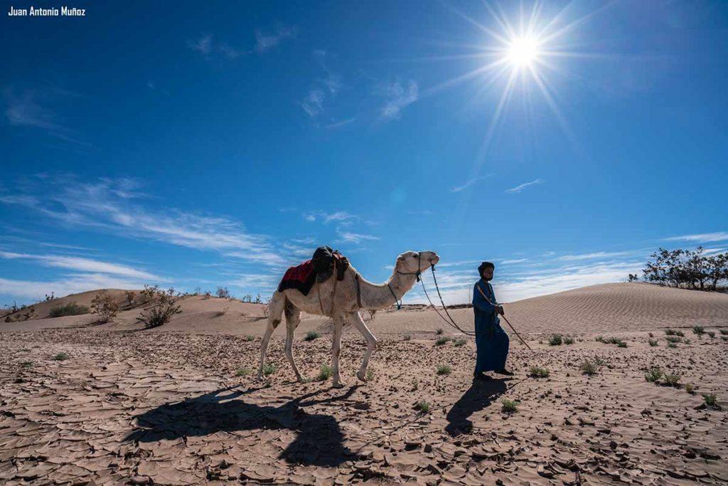 Suelo cuarteado. Marruecos