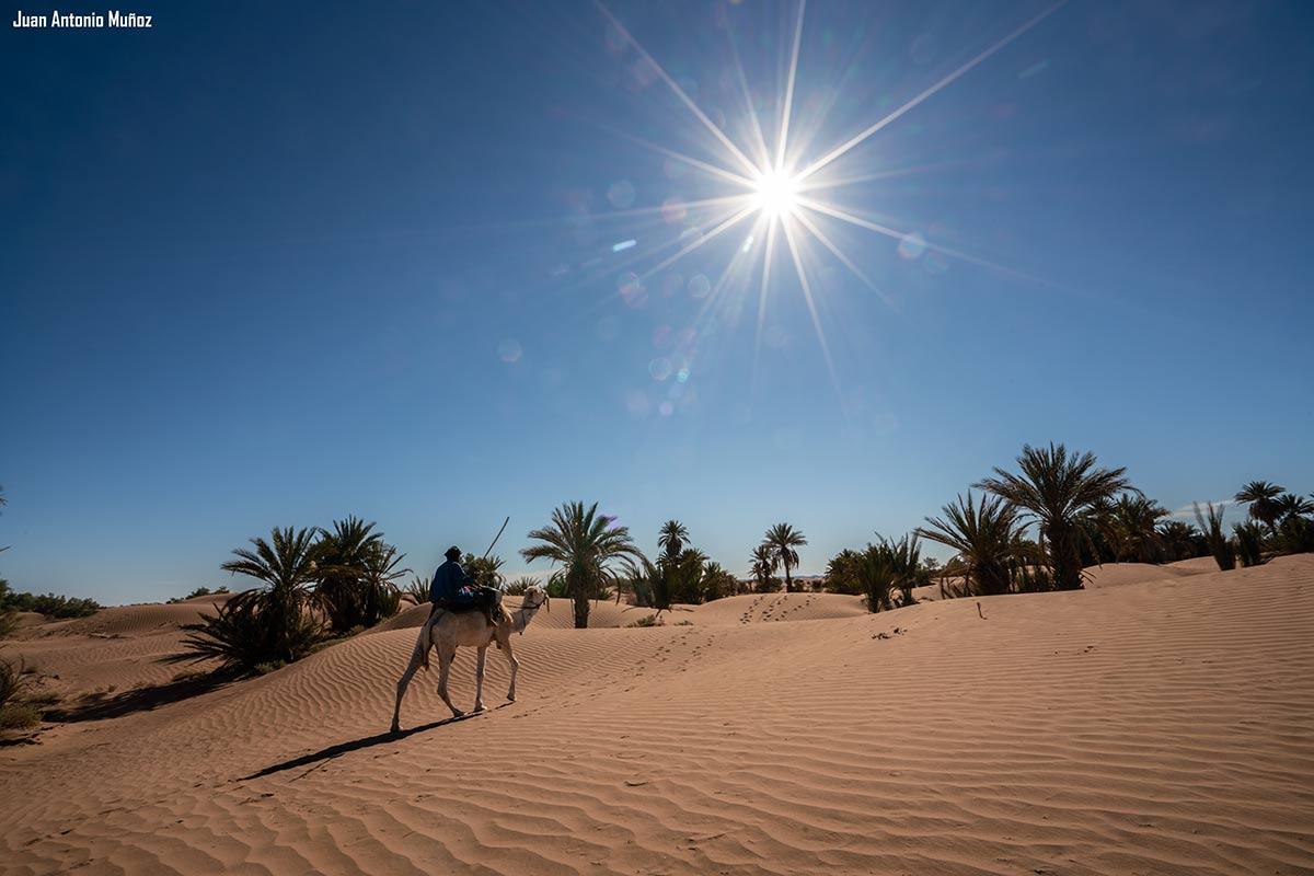 Sol abrasador en dunas. Marruecos