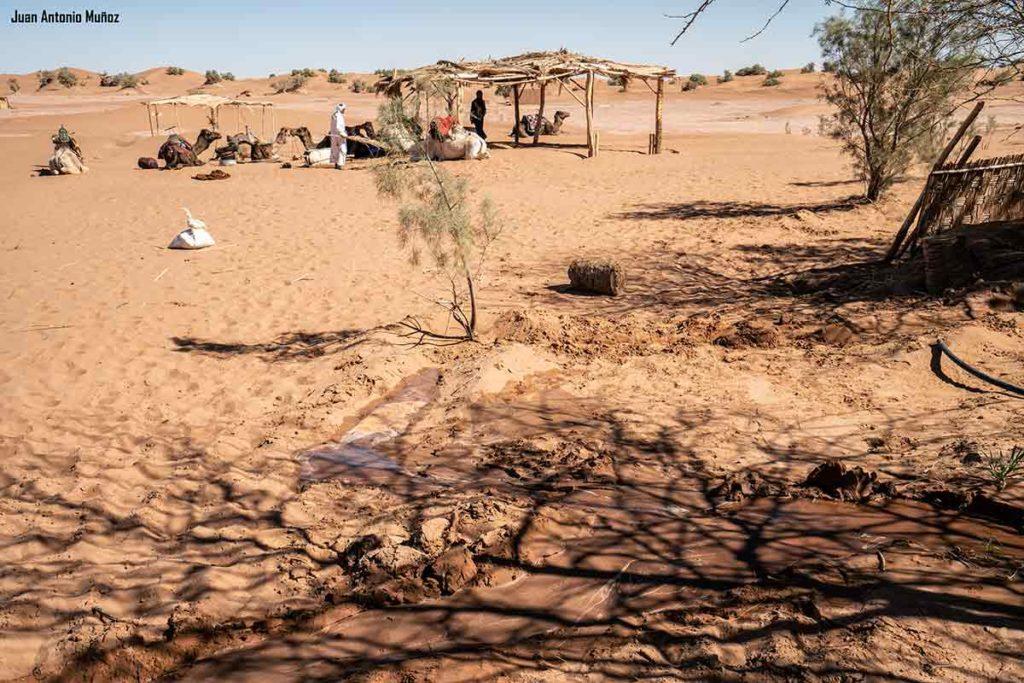 Punto agua desierto. Marruecos