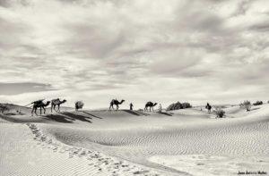 Caravana cresta duna. Marruecos